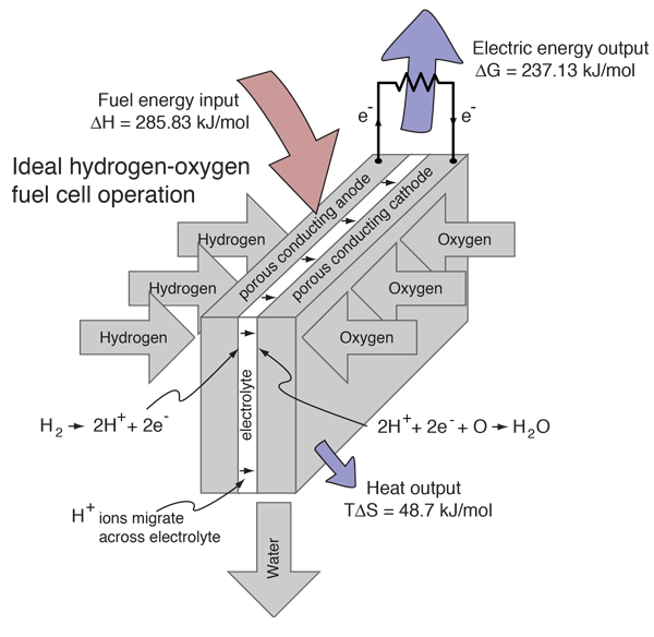 Electrolysis of Water and Fuel Cell Operation